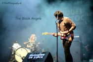 06 The Black Angels