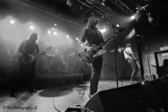13 The Datsuns